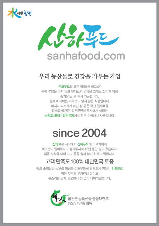 Copy of sf_01-01.jpg